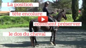 comment préserver les vertèbres dorsales de votre cheval