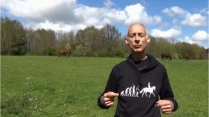 comment donner confiance à son cheval