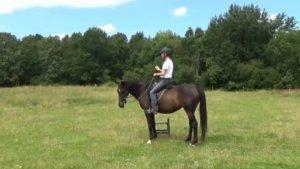 Monter à cheval : mon rituel