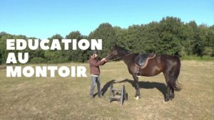 Education au montoir